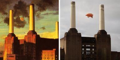 """Read more: Pink Floyd Pig Recreates """"Animals"""" Album Cover"""