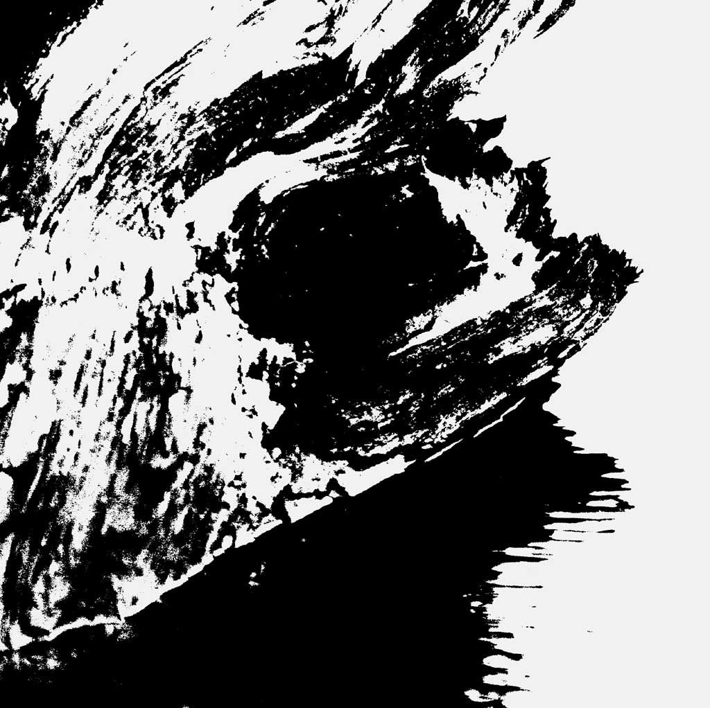 Abstract black and white on canvas – Cats, a photography based ...
