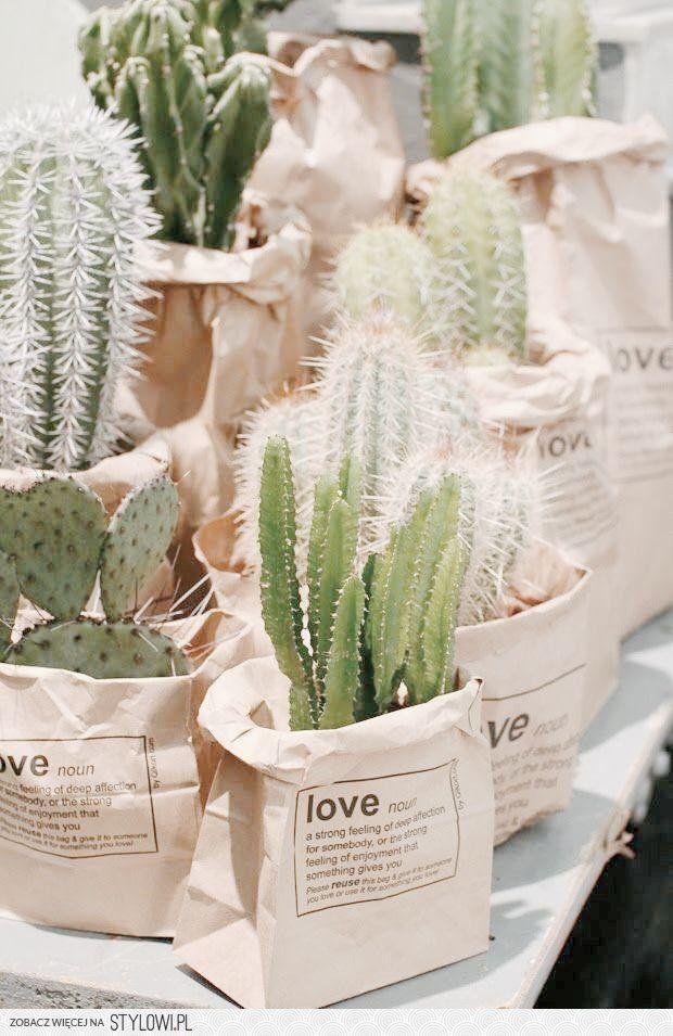 Te 9 inspiracji udowodni Ci że rośliny w domu to świetn… na Stylowi.pl