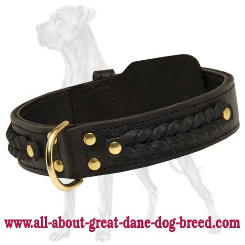 Braided Leather Dog Collar Witha D Ring To Attach A Leash  picture