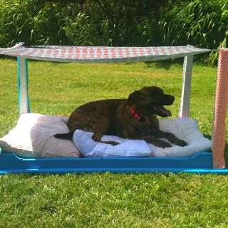 The Shaded Dog Bed I Made For My Pups Outdoor Dog Bed Dog Bed Diy Dog Stuff