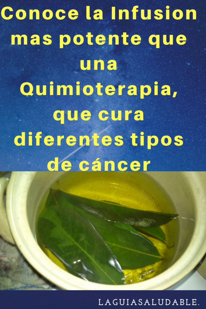 Pin On Vegetales Para Evitar El Cancer