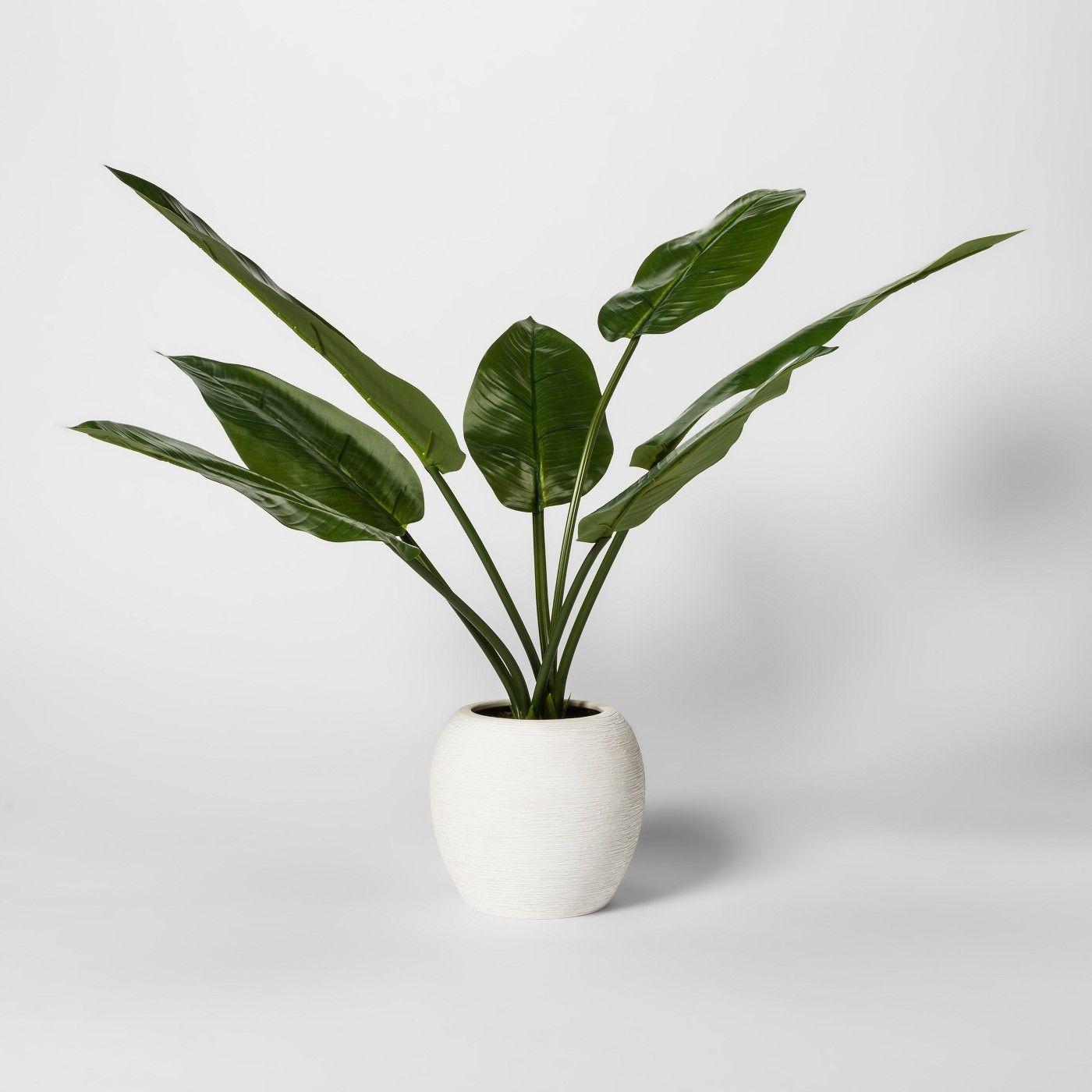 Artificial banana leaf plant threshold image of eyeworks