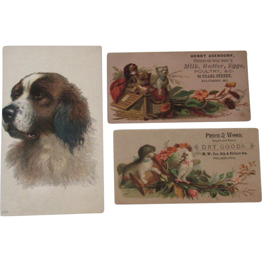 3 Victorian Dog Trade Cards Advertising Baltimore Philadelphia And Furnaces Victorian Cards Dogs
