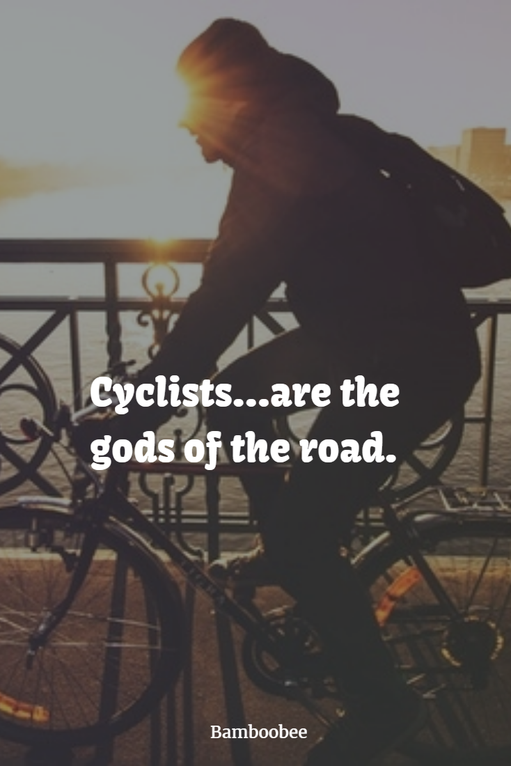 pin by bamboobee net on bicycle quotes pinterest specialized