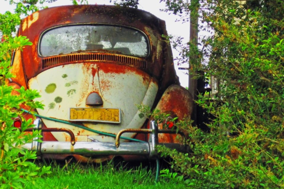 Pin by Julie Durovchic on On the Road Again | Volkswagen ...