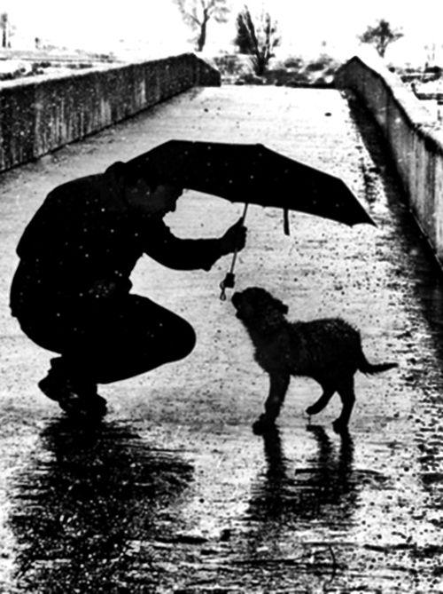 Doggyyy(: