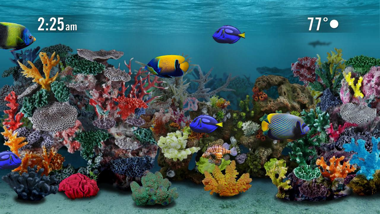 Aquarium Screensaver Screensavers Roku Channel Store