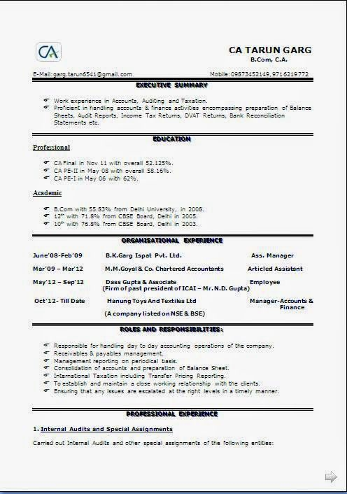 Curriculum Vitae Sample For Job Application Sample Template