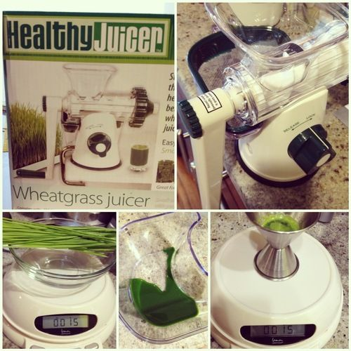 The Best Wheatgrass Juicer   Raw Food Diet   Wheatgrass