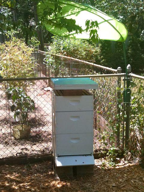 IKEA Hackers: outdoors....beehive