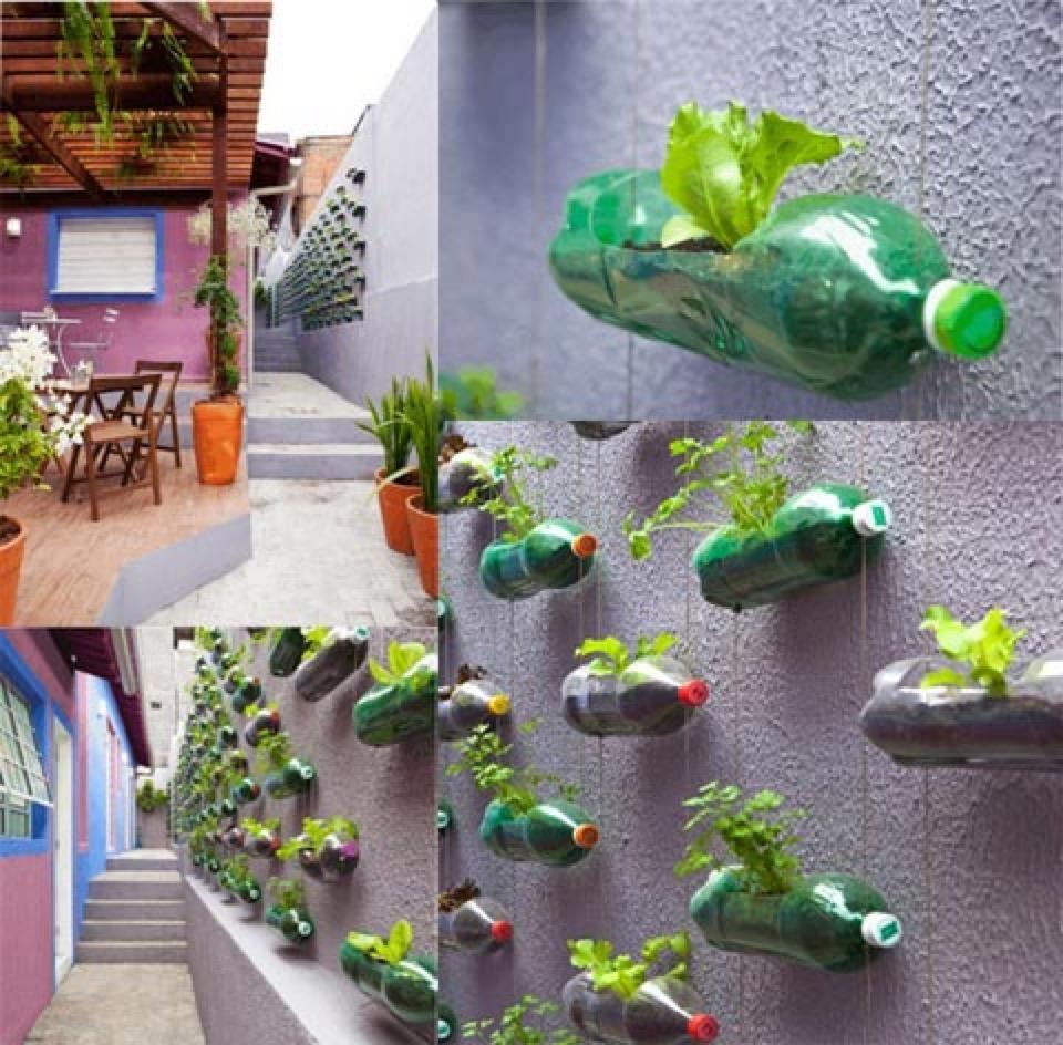 Urban wall gardening - Balcony Herb Garden Concept
