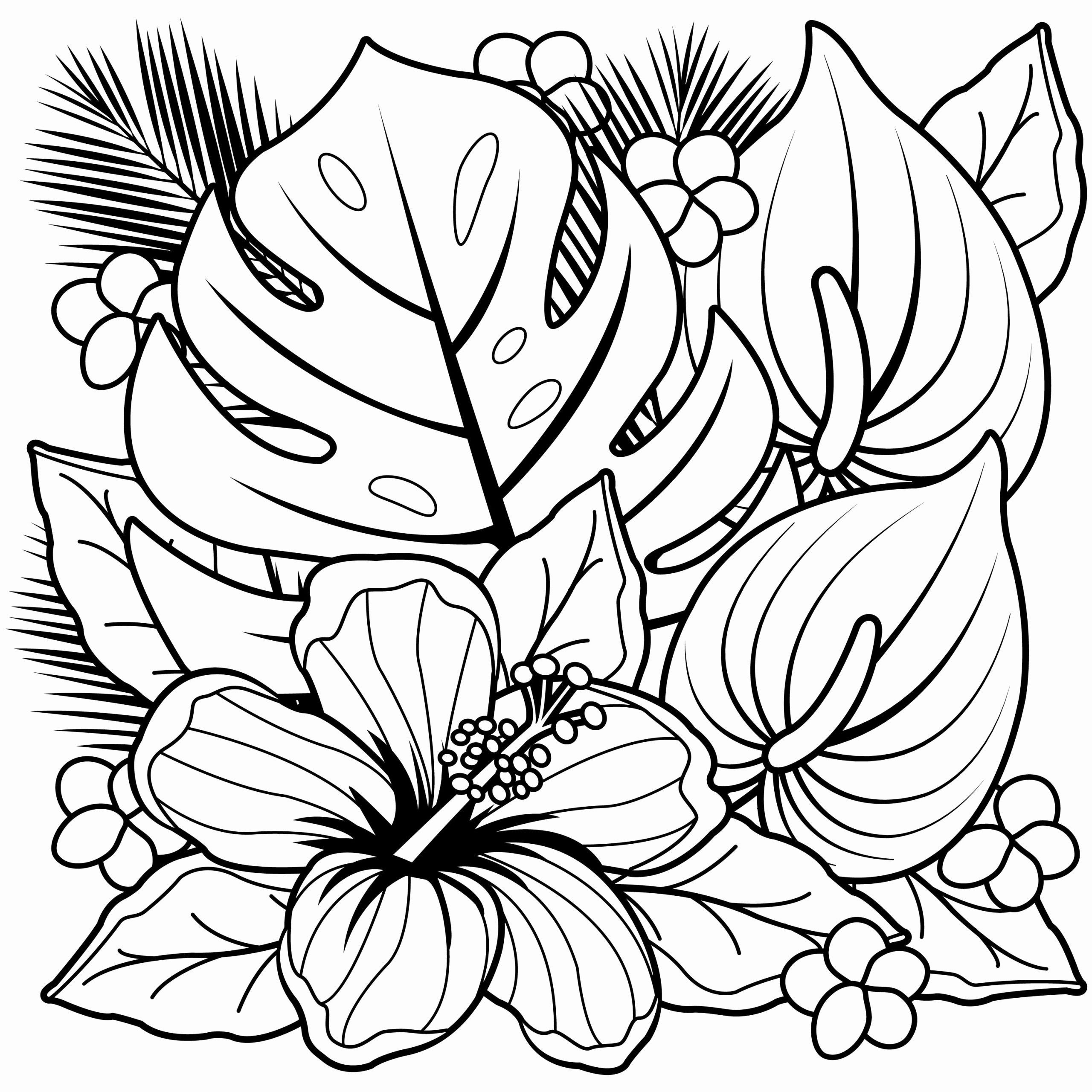 Hawaiian Flower Coloring Page Unique Coloring Pages Hawaiian Flowers Collection Printable Flower Coloring Pages Flower Coloring Sheets Free Coloring Pages