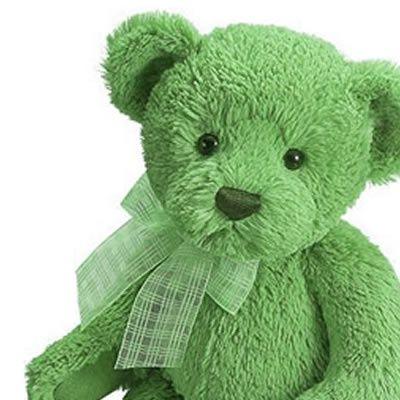 6b6ccd72874 I love collecting small teddy bears. Mint Green Teddy Bear ...