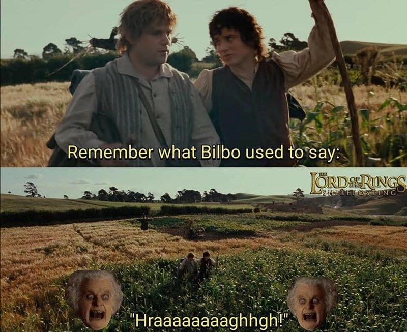 Dank Lord Of The Rings Memes For The True Heads Lord Of The Rings Lotr Funny Hobbit Memes