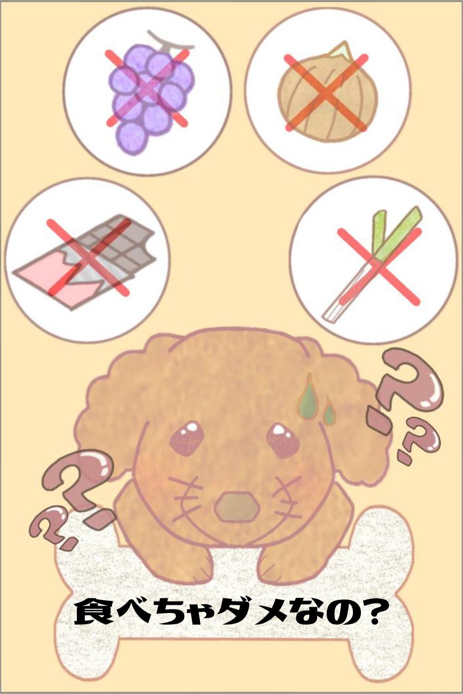 犬 に あげ て は いけない 食べ物