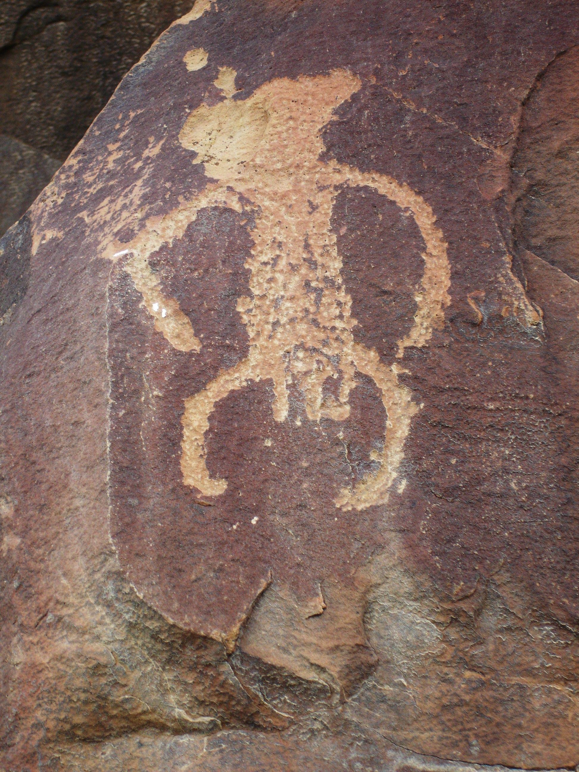 Petroglyph In Wyoming In