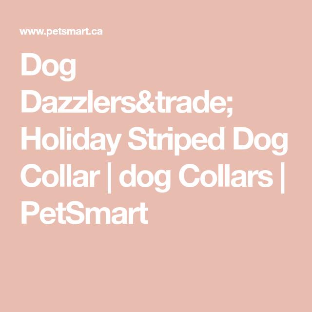 Dog Dazzlers Trade Holiday Striped Dog Collar Dog Collars Petsmart In 2020 Flea Shampoo Training Treats Pet Spray