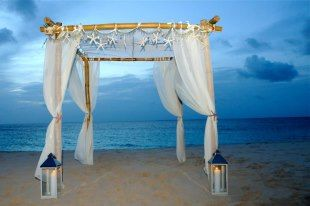 from Couture Concepts - Anguilla  @conitra they have pastel Gossamer and Toule at shindigz.com for decent prices