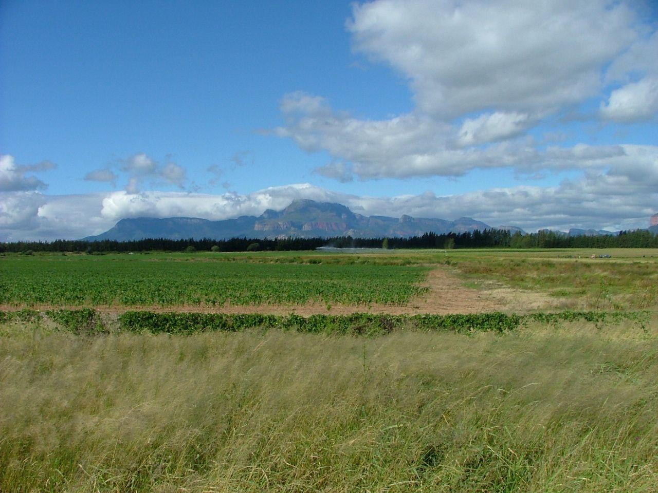 Northern Drakensburg Mountains