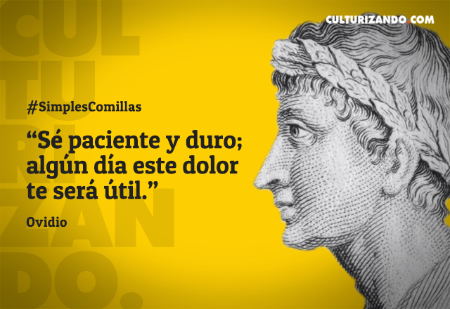 Ovidio Un Poeta Millonario Frases Frases Filosoficas
