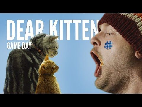 """Have you ever watched any of the """"Dear Kitten"""" videos on YouTube?   The newest installment features the wise and witty cat explaining the ins and outs of the #SuperBowl to his kitten sidekick."""