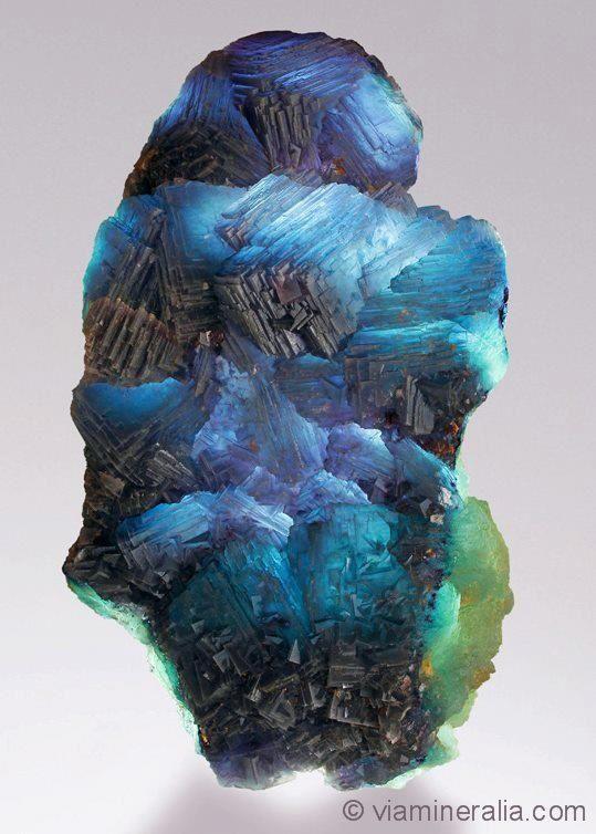 """Fluorite from Weisseck Mt., Lungau, Salzburg, Austria (specimen and photo by Martin Gruell """"Viamineralia"""")"""