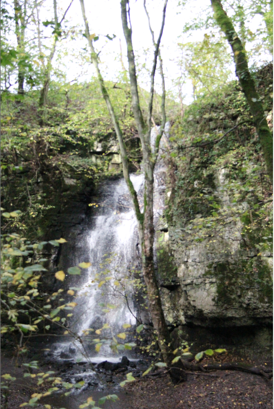 Secret Waterfall (With images) Waterfall, Outdoor, Water