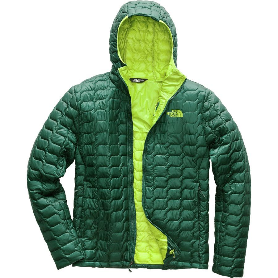 The North Face Thermoball Hooded Insulated Jacket Men S Botanical Garden Green North Face Hoodie Hoodies Men North Face Mens [ 900 x 900 Pixel ]