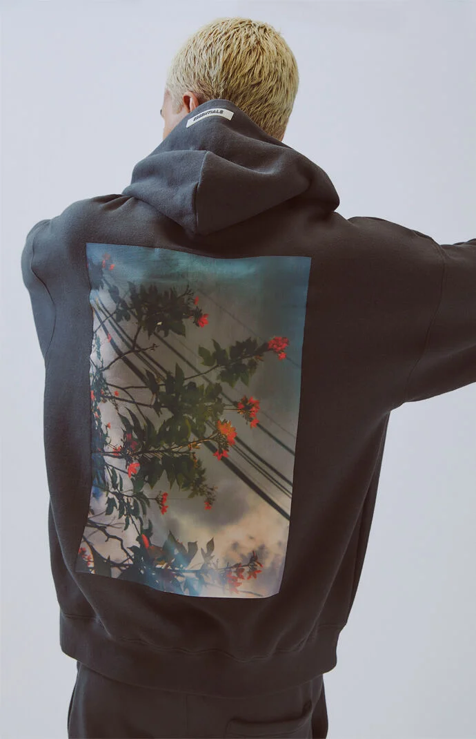 Fog Fear Of God Essentials Photo Series Pullover Hoodie At Pacsun Com Essential Photos Hoodies God Clothing