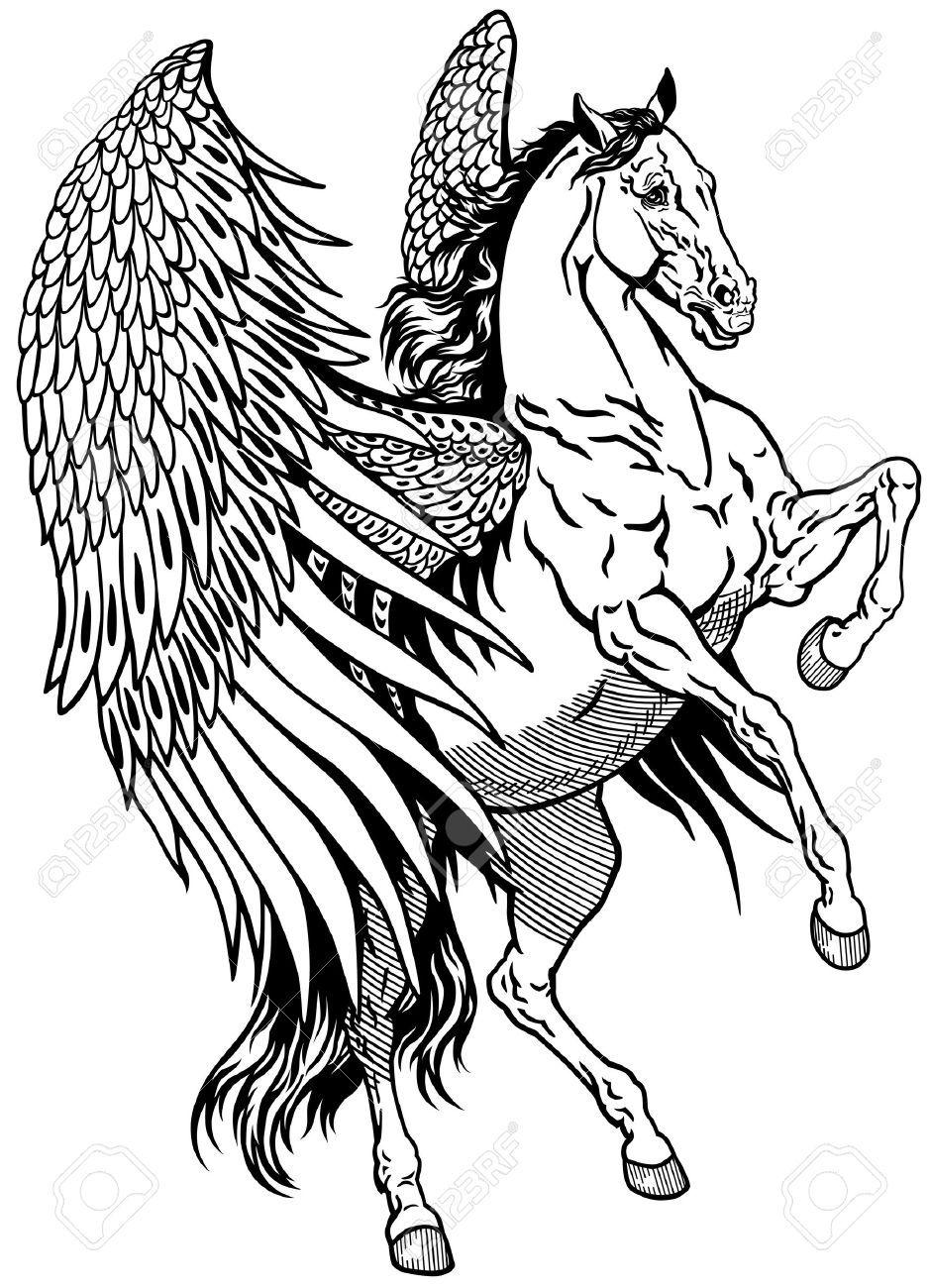 White Pegasus Mythological Winged Horse Black And White Illustration Pegasus Tattoo Pegasus Drawing Winged Horse