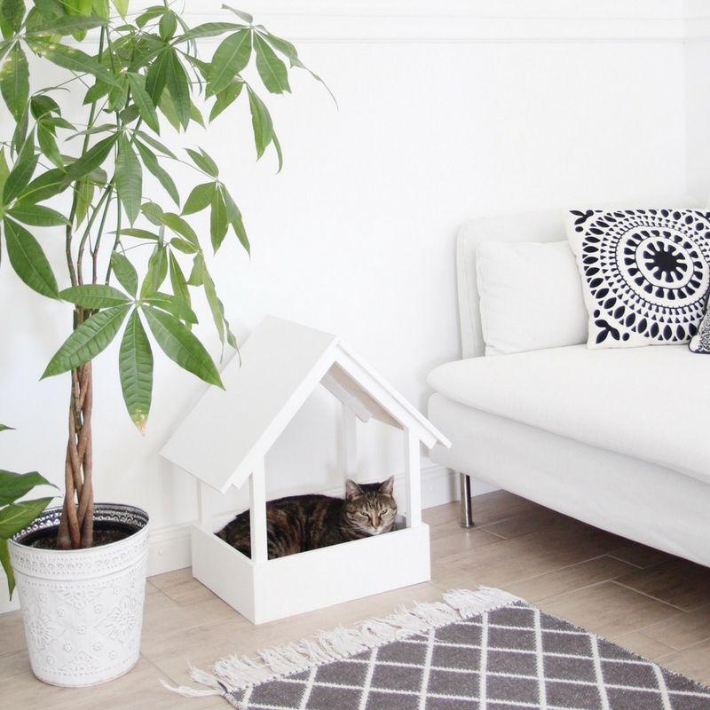 Diy Einrichtungsideen diy stillvolles katzenbett selbst bauen