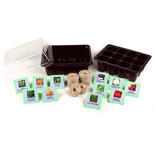 Vegetable Garden Seed Starter Kit Vegetable Garden Https Www