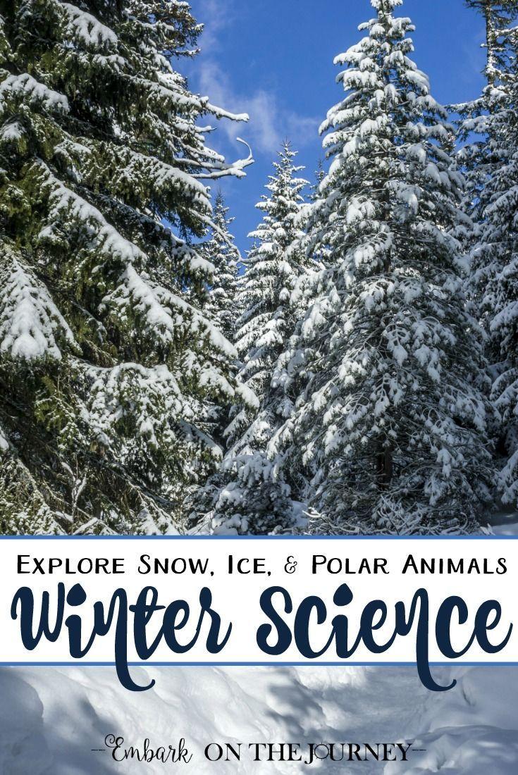30+ Amazing Winter Science Activities for Kids | Science activities, Science activities for kids ...