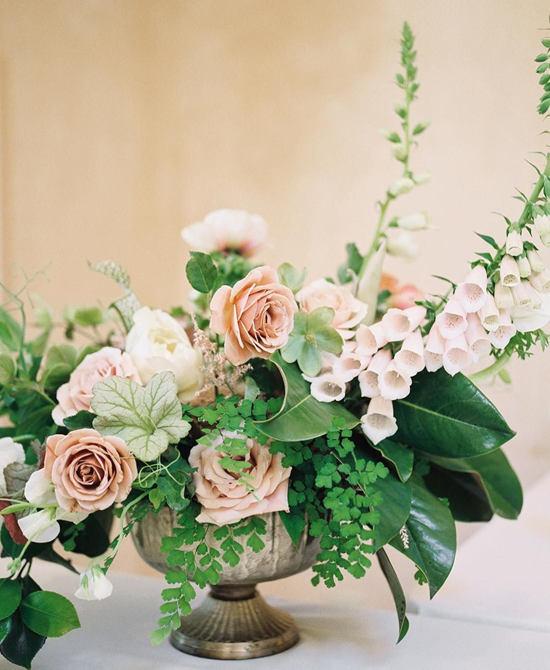 Divine Wedding Flowers: Pin By Angela Murphy On Franklin Tommorow