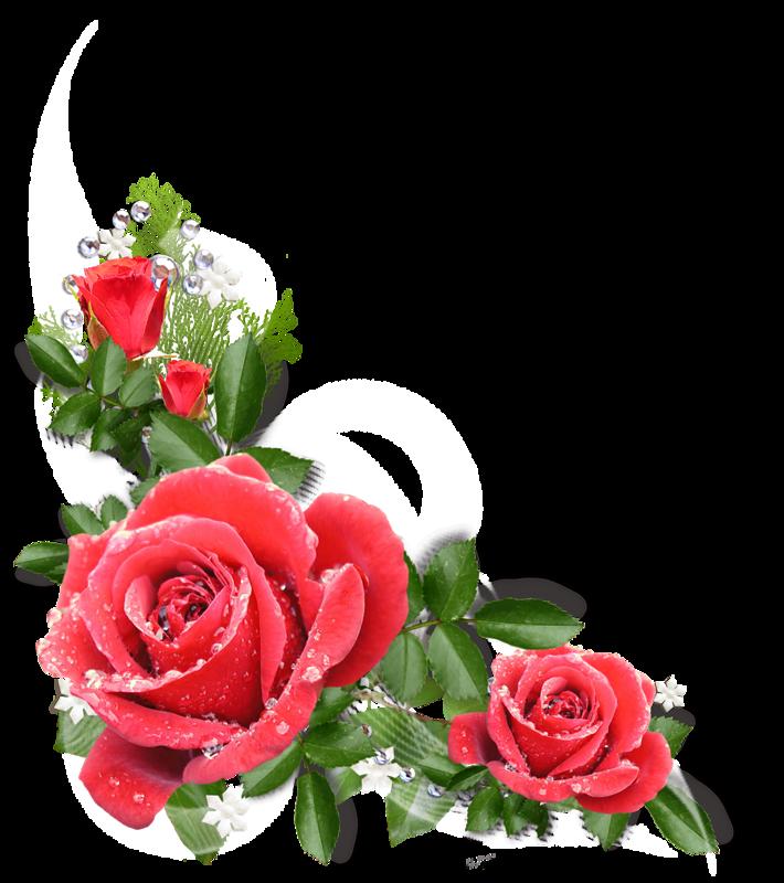 Вставка цветы в открытку, летучих мышей для