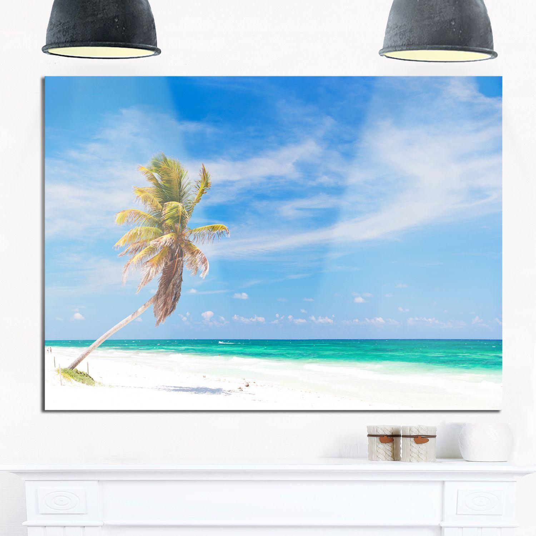 Solitary Coconut Palm at Beach - Seashore Photo Glossy Metal Wall Art