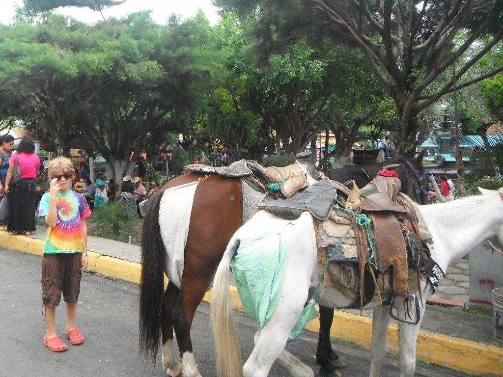Weekend Food Festival of Juayua Ruta de las Flores - Exploramum & Explorason