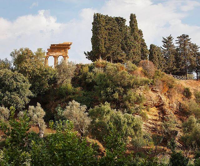 Primavera è ufficialmente iniziata e vogliamo visitare i giardini più belli dItalia ogni weekend Tra il tempio di Castore e Polluce e quello di Vulcano nel cuore della Valle dei Templi di Agrigento si trova il Giardino della Kolymbethra. Oggi gestito dal #FAI ospita piante della macchia mediterranea e un rigoglioso agrumeto. #MCMood #Kolymbethra #TempiodiCastoreePolluce #TempiodiVulcano #ValledeiTempli #GiardinodiKolymbetra #Agrigento #GiardinidItalia #MacchiaMediterranea #WeLoveItaly…