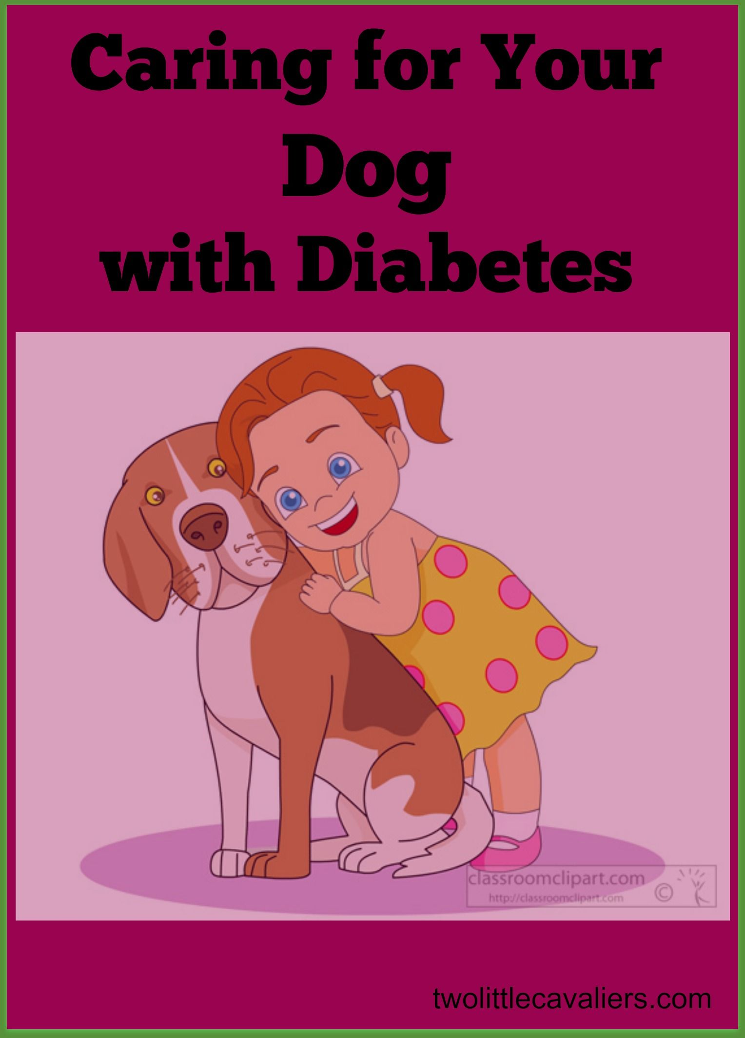 Caring for Your Diabetic Dog | Diabetic dog, Dog health ...