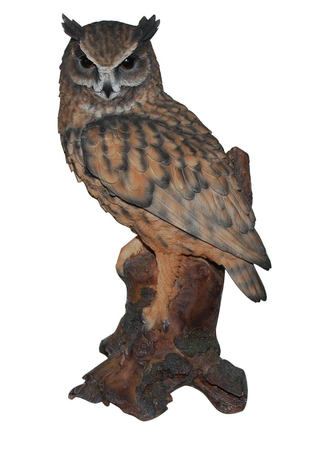 Real Life Large Long Eared Owl Garden Ornament (SizeB): Amazon.co.uk: Garden & Outdoors