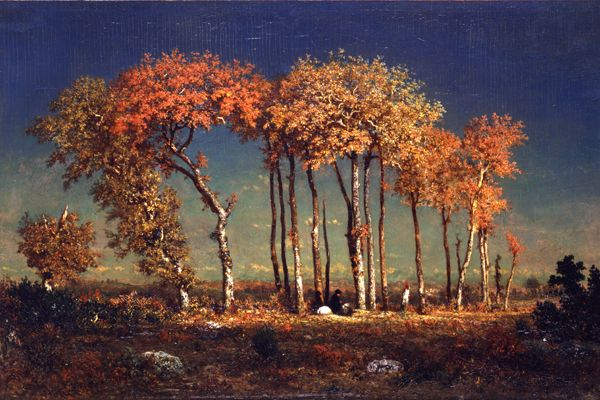 Artwork Of The Week September 20 Theodore Rousseau Toledo Museum Of Art Landscape Paintings