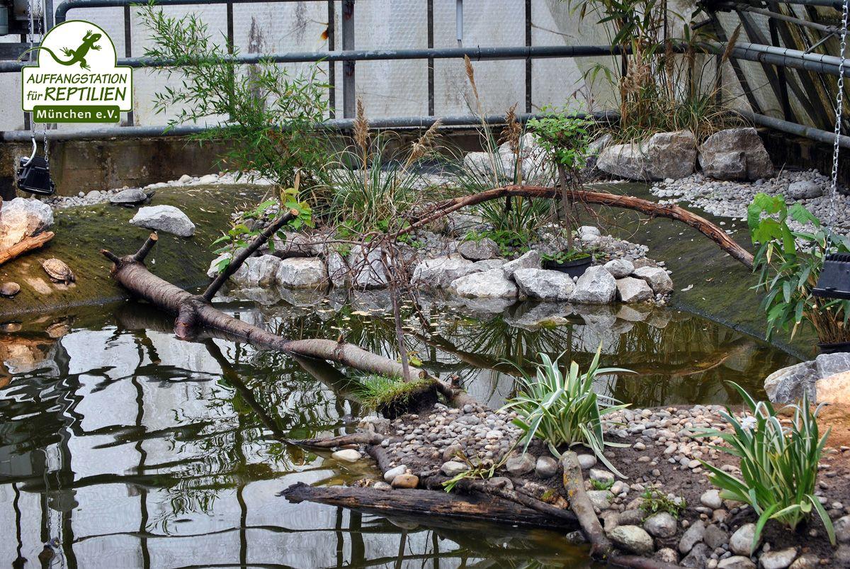 Mit Vliesmatten, Steinen, Ästen und Baumstämmen und gaaanz vielen Pflanzen nehmen die Teiche langsam eine natürlichere Gestaltung an.