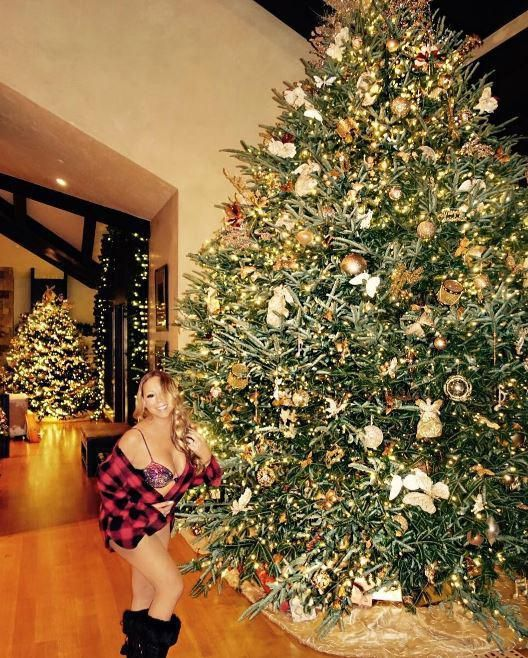 Image result for christmas tree poses Mariah carey