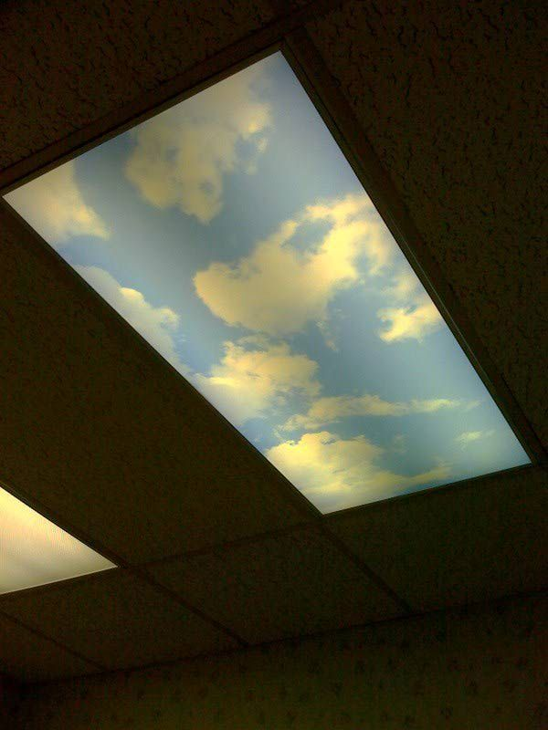 fluorescent light covers fluorescent light cover