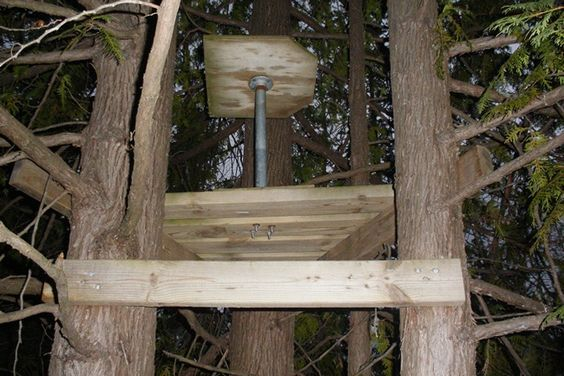 Creative Hunting Tree Stands Google Search Tree Stand