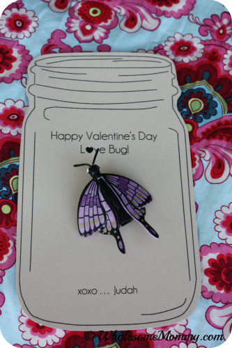 FREE PRINTABLE Bug Valentines Cards  Great for Boys  but girls