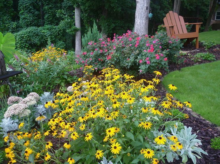 New To Site And Adding Pictures On Pc, Bare W/me   And I. Landscaping IdeasBackyard  ...