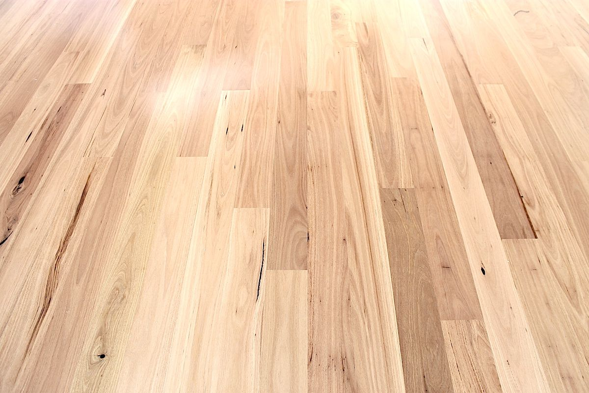 Blackbutt flooring google search want this colour for Hardwood timber decking