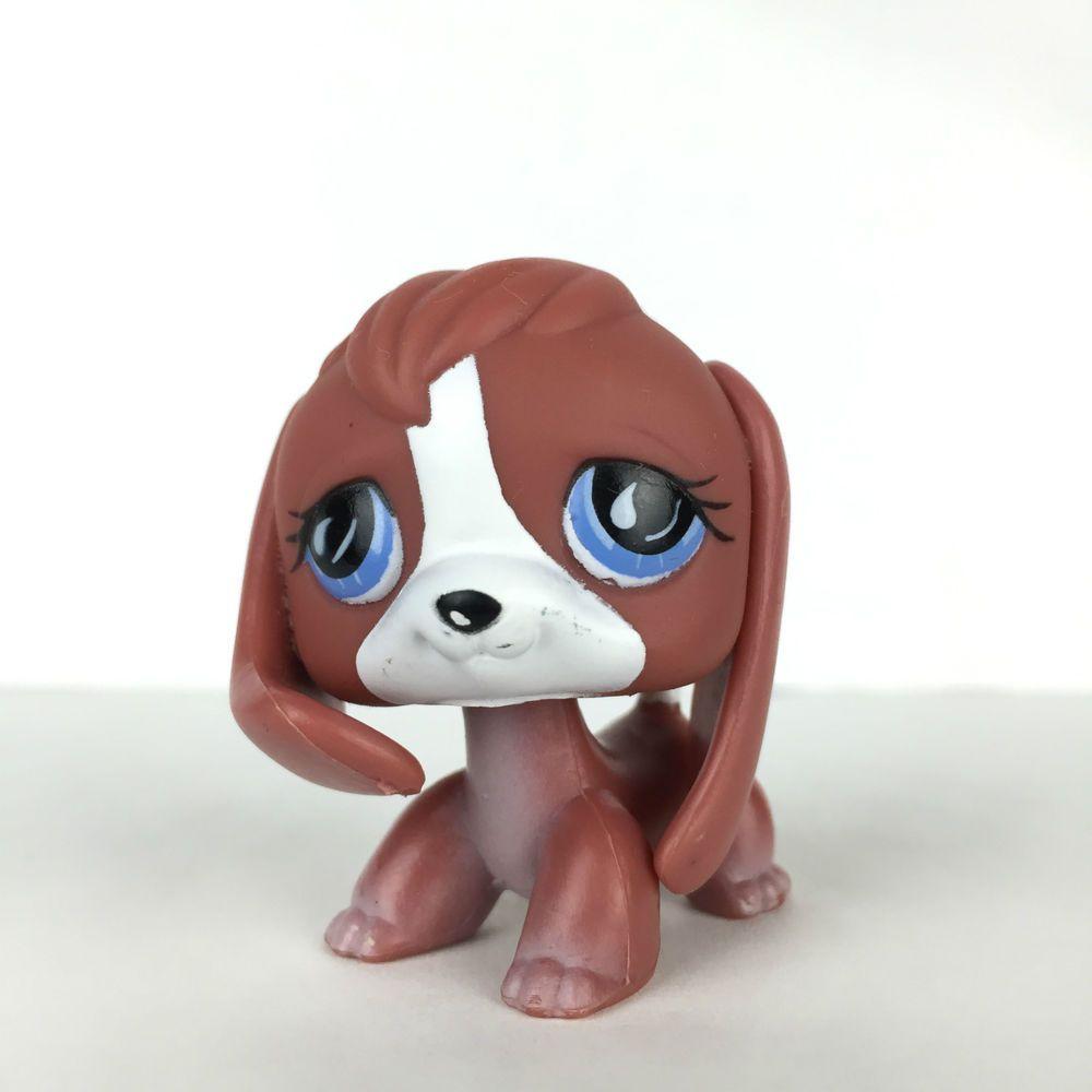Authentic littlest petshop 567 chien beagle dog hasbro - Chien pet shop ...